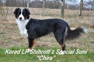 Shihrott`z Special Suni
